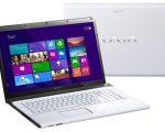 Sony VAIO SVE1713M1R